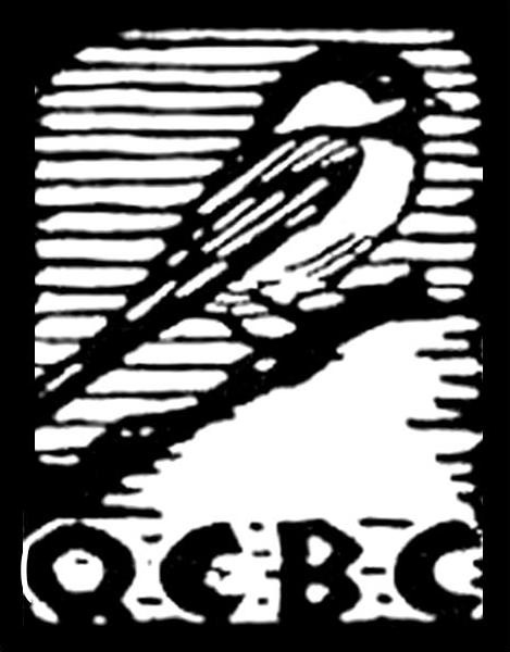 Welcome to the Queens County Bird Club. Click here for more information
